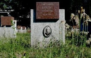 SONCINI ERALDO