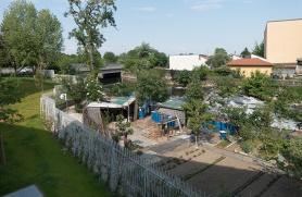 La vista sul Lambro (Gli orti non sono curati dai residenti)