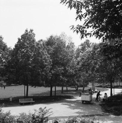 Parco Lambro 1979 (foto Beppe De Nardin)