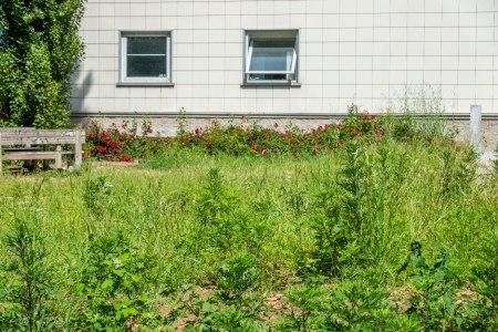 Il giardino fronte biblioteca